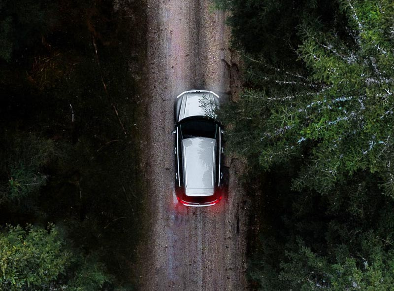 Car in a forest